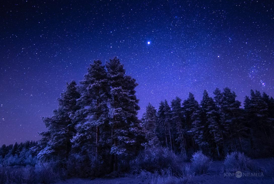 Photographer of the stars Case study: Peristomal pyoderma gangrenosum - Wound Care